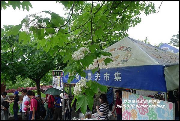 客家大院桐花公園18.JPG