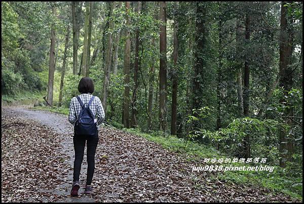 鴛鴦谷瀑布2.JPG