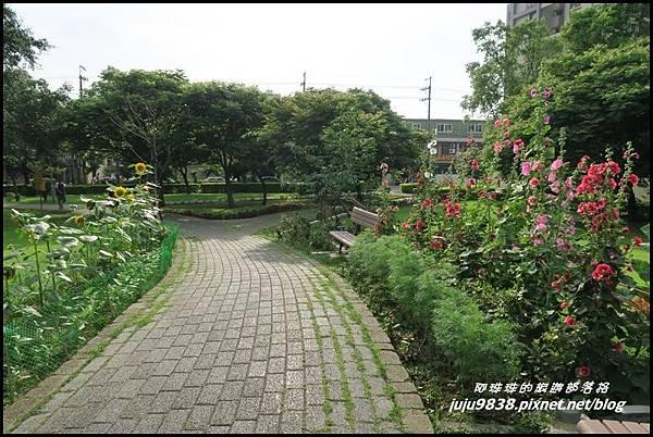 山仔頂公園59.JPG