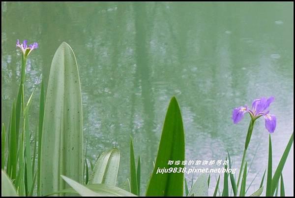 雲山水25.JPG