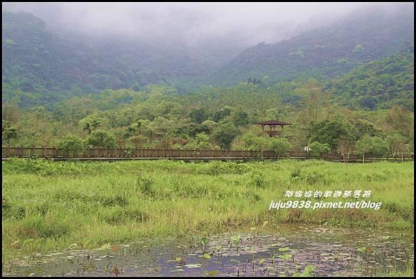 馬太鞍濕地23.JPG