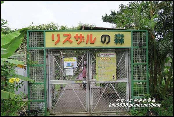 石垣島之旅102.JPG