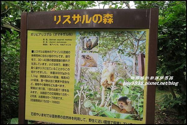 石垣島之旅106.JPG