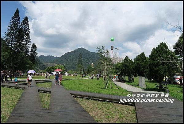 石門水庫熱氣球33.JPG