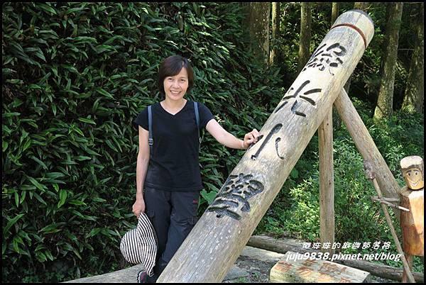 馬武督探索森林5.JPG