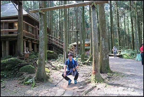 馬武督探索森林11.JPG