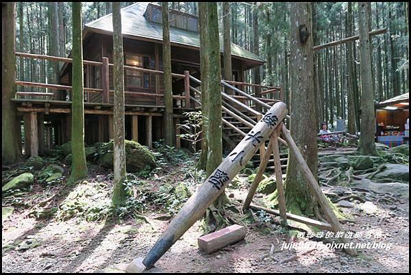 馬武督探索森林12.JPG