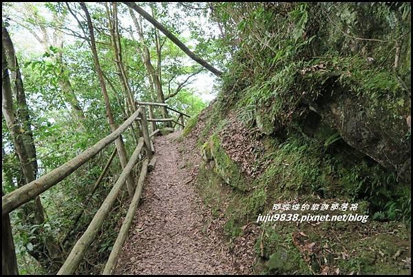 馬武督探索森林57.JPG