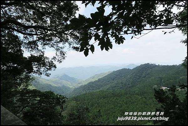 馬武督探索森林63.JPG