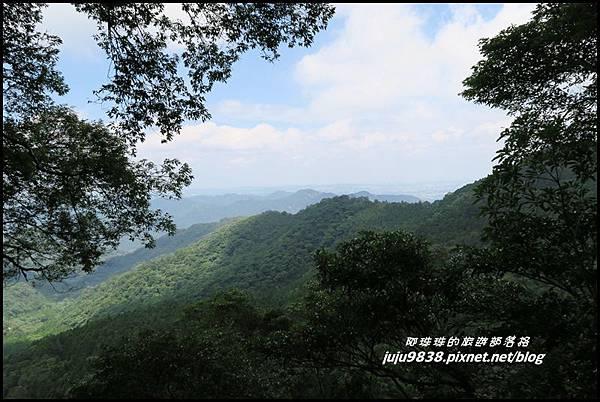 馬武督探索森林66.JPG