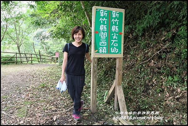 馬武督探索森林68.JPG