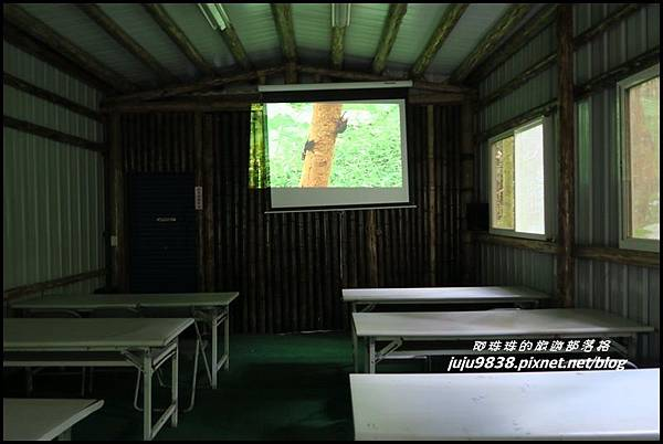 馬武督探索森林86.JPG
