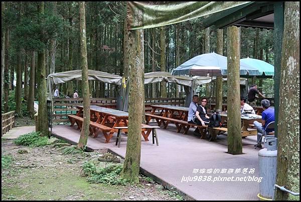 馬武督探索森林88.JPG