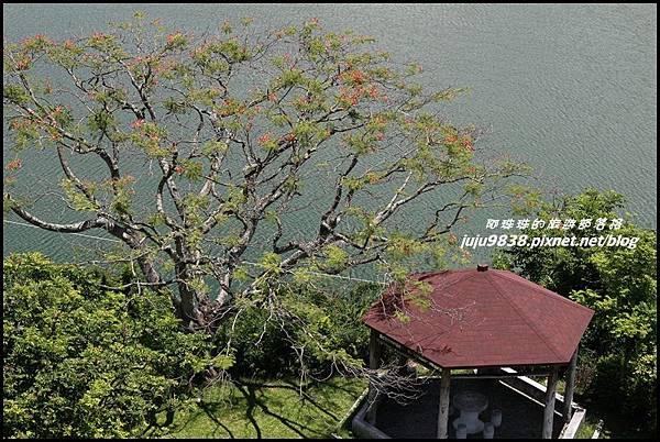 曾文水庫8.JPG