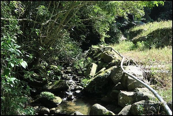 怪獸森林90.JPG