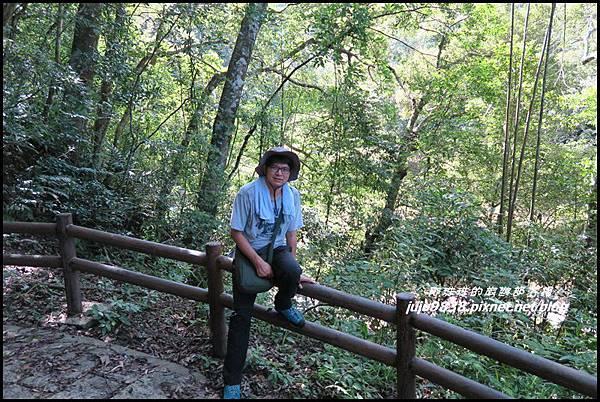 怪獸森林92.JPG
