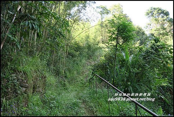 怪獸森林98.JPG