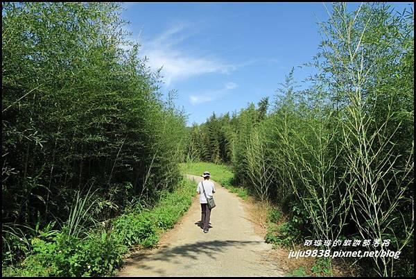 怪獸森林107.JPG