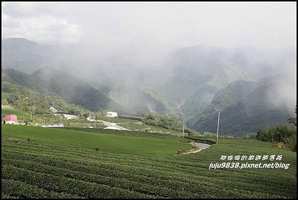 二延平步道18.JPG
