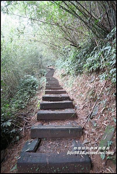 二延平步道38.JPG