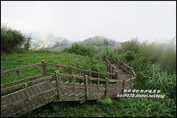 二延平步道59.JPG