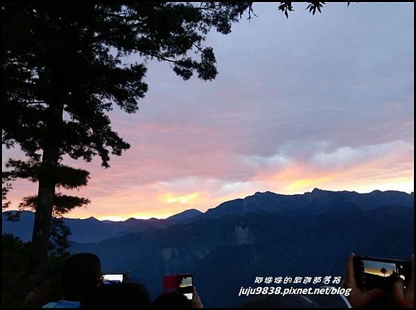 阿里山12.jpg