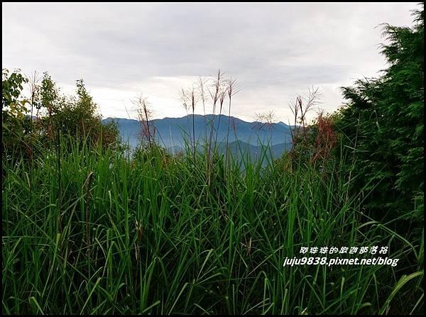 阿里山21.jpg