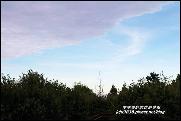阿里山24.JPG