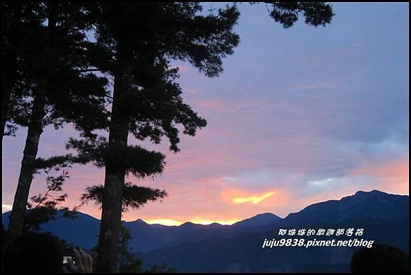 阿里山43.JPG