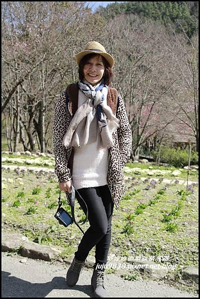 武陵農場1.JPG