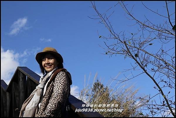 武陵農場26.JPG