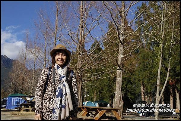 武陵農場35.JPG