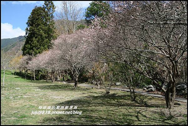 武陵農場88.JPG
