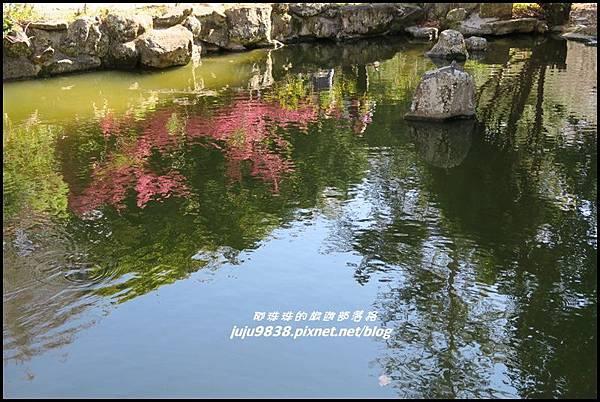 武陵農場130.JPG