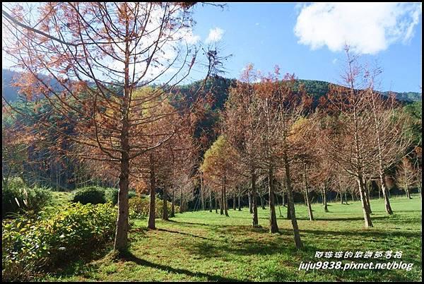 武陵農場158.JPG