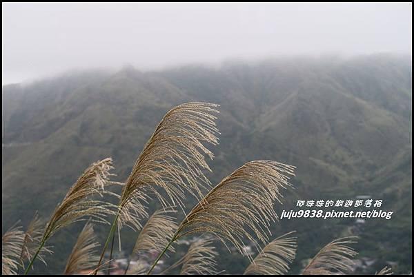 基隆山29.JPG