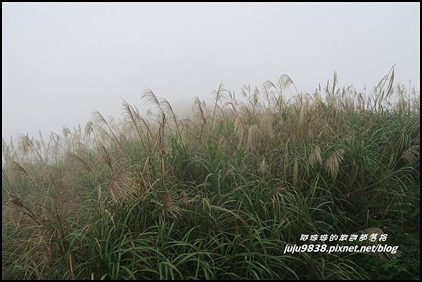 基隆山37.JPG