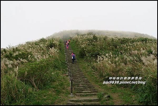 基隆山41.JPG