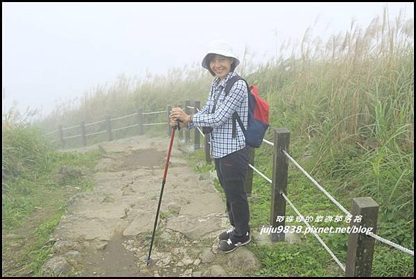 基隆山51.JPG