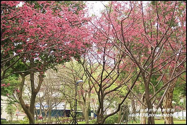 莒光公園34.JPG