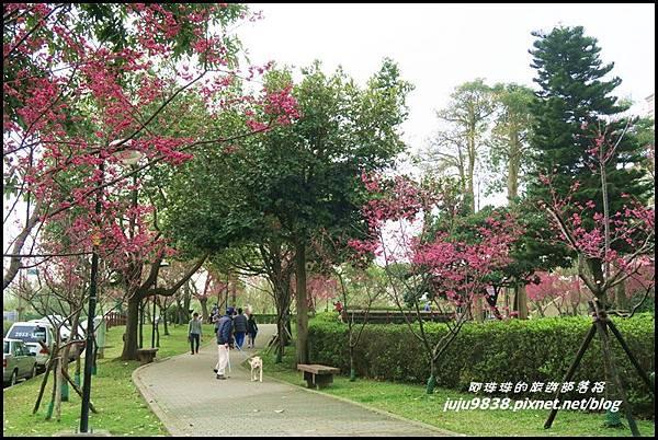 莒光公園49.JPG