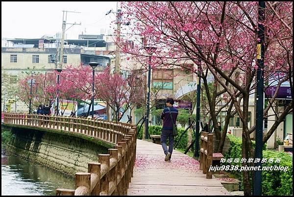 莒光公園79.JPG