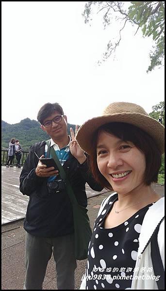 大溪花海4.jpg