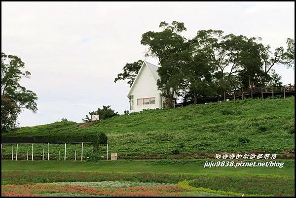 大溪花海10.JPG