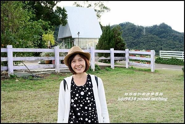 大溪花海29.JPG