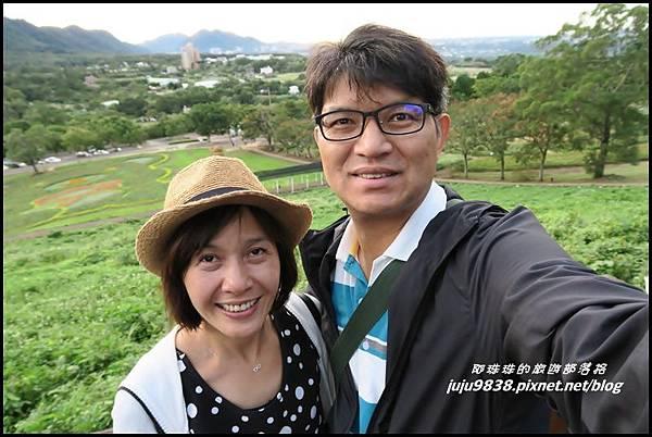 大溪花海32.JPG