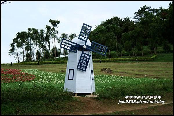 大溪花海63.JPG