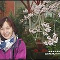 阿里山5.JPG