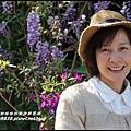 瑞里紫藤花季7.JPG