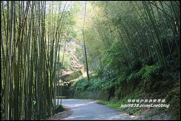 瑞里綠色隧道5.JPG